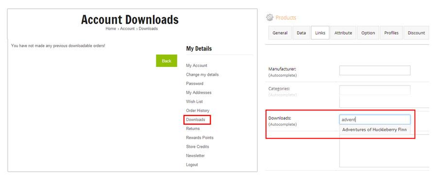 Manage Downloads