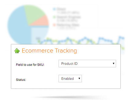 Ecommerce Design SEO and Analytics